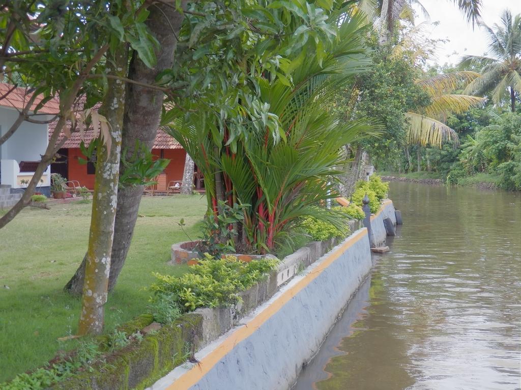 Kumarakom-Hotel-Budget-Rooms-00076