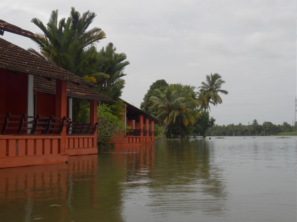 Kumarakom-Hotel-Budget-Rooms-00078