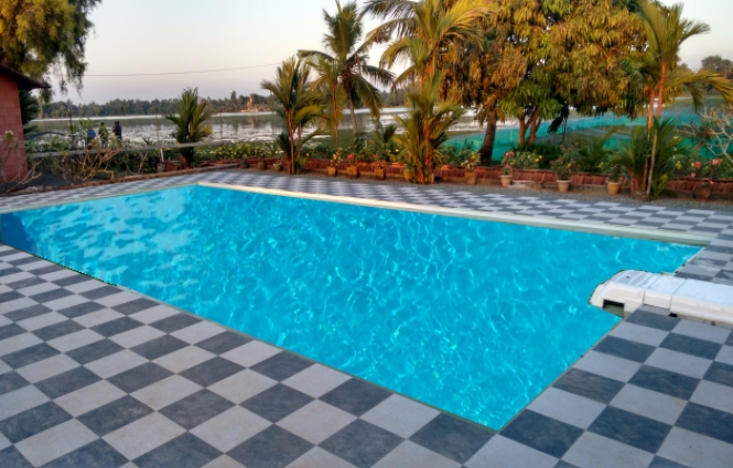 Waterlilly Swimming Pool - Enjoy & refresh Your Stay